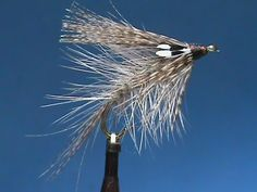 Beginner Fly Tying a Mallard and Hare Loch Fly with Jim Misiura - YouTube