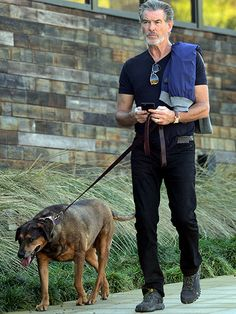 Star Tracks: Thursday, November 19, 2015 | SILVER FOX | Former Sexiest Man Alive Pierce Brosnan multitasks on his phone while walking his dog in Malibu, California, on Wednesday.