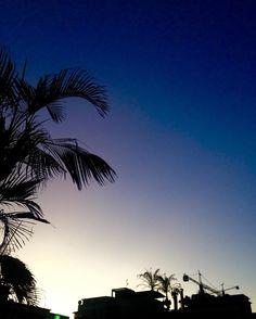 #atardecer #sunset  #cielo #sky #construccion #construction #grua #ciudad #city #citta #urbano #urban #building #edificio #edificacion #crane #costruzione #lasmercedes #placa #palmera #palmtrees