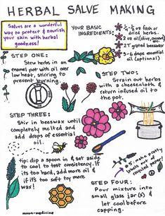 Watch This Video Incredible Natural Remedies for Everyday Ideas. Divine Natural Remedies for Everyday Ideas. Healing Herbs, Medicinal Plants, Natural Healing, Holistic Healing, Natural Health Remedies, Herbal Remedies, Cold Remedies, Holistic Remedies, Natural Medicine