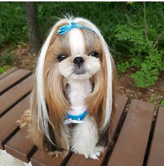 """I love my bow but """"extensions"""" again!!!!!"""