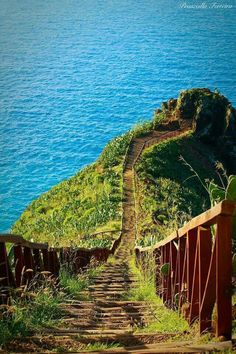 Madeira Island Luxury Properties, Holiday Homes & Real Estate Investment Beautiful Islands, Beautiful World, Beautiful Places, Funchal, Places Around The World, Around The Worlds, Travel Photography, Nature Photography, Portugal Travel
