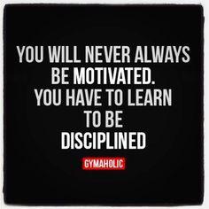 Discipline                                                                                                                                                     More