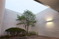 Jeong Jaeheon Textured Walls, Building Design, House Design, Interior, Plants, Home, Gardening, Facades, Architecture