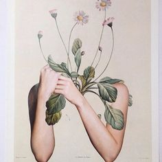 Wednesday mood, head in the blooms. Art by Nicola Kloosterman Inspiration Art, Art Inspo, Instagram Posts, Plant Drawing, Art Et Illustration, A Level Art, Plant Art, Illustrators, Flowers