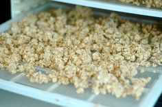 How to soak Oats / @Shaye Elliott / http://theelliotthomestead.com/2013/02/how-to-soak-plain-oats/
