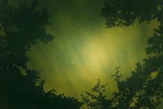"Ryan MCGINLEY ""Night Sky Green"" 2010, C-print / Photographie couleur, 183 x 280 cm, 1/3 + 2AP -      Courtesy Galerie Perrotin"