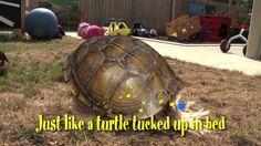 Turtle Safe (April 2011)