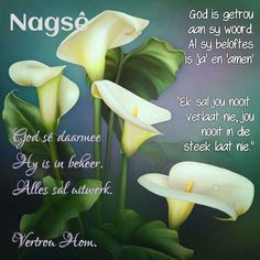 Good Night Blessings, Good Night Wishes, Good Night Quotes, Evening Quotes, Evening Greetings, Afrikaanse Quotes, Goeie Nag, Christian Messages, Prayer Quotes