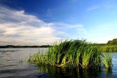 Niewielka rzeka łączy 8 jezior rynnowych o najwyższej klasie czystości: Ostrowite, Zielone, Jeleń, Bełczak, Główka, Płęsno, Skrzynka i Mielnica. Struga Siedmiu Jezior odprowadza swoje wody do jeziora Charzykowskiego