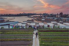 Brooklyn Grange is a Wedding Venue in New York, United States, Brooklyn. See photos and contact Brooklyn Grange for a tour. East River, Long Island, New York City, Brooklyn, Nyc Wedding Venues, Summer Sunset, See Photo, United States, The Unit
