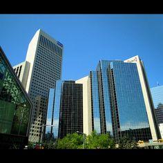 Skyscraper Patch Photography Photos, Calgary, Skyscraper, Multi Story Building, Board, Skyscrapers, Sign, Planks