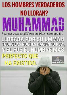 Quotes islámico  Islam en español para todos