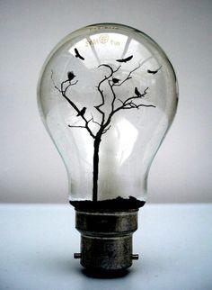 Glühbirne Baum                                                                                                                                                                                 Mehr