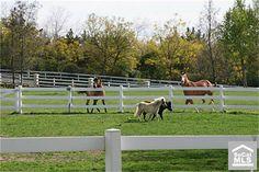 Horse Property in Coto De Caza, Ca. #orangecounty