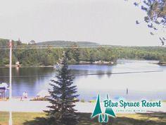 An Upscale Cottage Resort Near Algonquin Park - Blue Spruce Resort - Huntsville