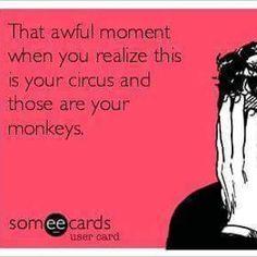 #NotMyMonkeys
