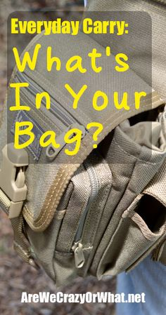 Everyday Carry: What's In Your Bag?~AreWeCrazyOrWhat.net