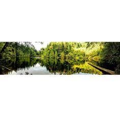 """Beautiful Fragrance Lake in Bellingham WA. #bham #panorama #hiking #hikingadventures #pnw #pnwlife #kiro7 #king5 #fragrancelake #bellingham #fall Follow me on Instagram @jaubert2004"