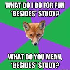 what do I do for fun *besides* study? What do you mean, *besides* study?
