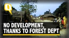 The Quint   FB Journo: No Development in This Village, Thanks to Forest ...