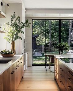 Walnut cabinet kitchen with floor to ceiling windows and green accents - Wonderful Home Design and Project Home Decor Kitchen, Kitchen Interior, Home Interior Design, Home Kitchens, Kitchen Ideas, Interior Plants, Interior Modern, Apartment Kitchen, Kitchen Recipes
