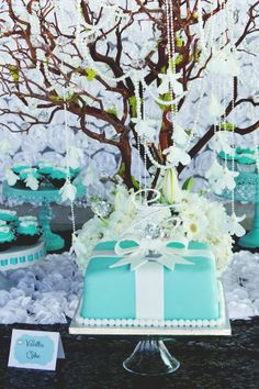 TIFFANY CO Quinceaera Party Ideas Photos Decor and Parties