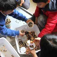 Explore different sounds while also building math, sorting, and measurement skills! Making Musical Instruments, Discovery Museum, Catapult, Plastic Bottles, Musicals, Creativity, School Life, Sorting, Fill