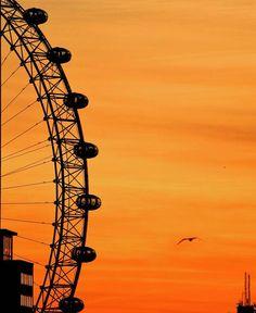 London Eye, Lambeth London Tips, London Eye, London Pictures, London Calling, Queen, London England, Great Britain, Fair Grounds, English