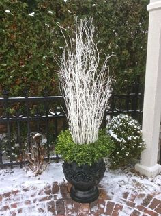 Idea for winter container pots...add a wreath on top of the container before adding your greens and branches!