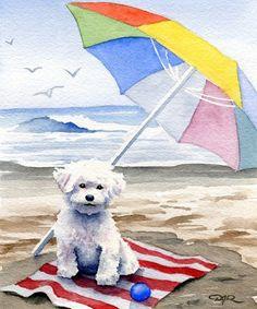 BICHON FRISE At The Beach Dog Art Print Signed by Artist DJ Rogers