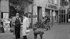 berlin1939.jpg (450×253)