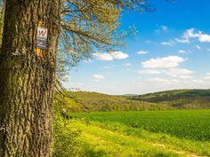 Wald-Brand – Hochrhöner Extratour