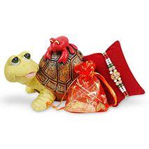 Turtle Money Bank & Rakhi Hamper