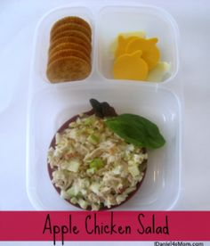{Kids Lunch} Apple Chicken Salad Bento