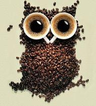 Coffee Love / Amor por el café
