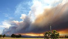 Gippsland bushfires in Victoria, Australia. (© Aaron Francis/Newspix/Rex Features)