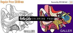 60% Off Today- Ear coloring, Anatomy coloring book, Medical Surreal adult coloring book, coloring pages, adult coloring pages, printable co