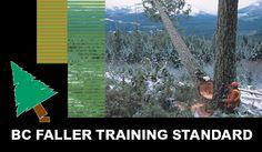 WorkSafeBC - Faller Training Standard Video Series (3 hour video)