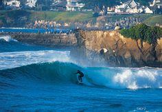 Santa Cruz CA   ... Attack Warnings Posted in Santa Cruz, CA Yesterday   SnowBrains.com
