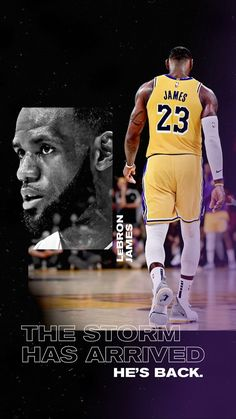 Kobe Bryant Lebron James, King Lebron James, Lebron James Lakers, King James, Pat Riley, Lakers Wallpaper, Best Nba Players, Nba Wallpapers, Magic Johnson