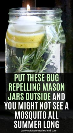 Put These Bug-Repelling Mason Jars Outside and You Might Not See a Mosquito All Summer Long - Natural Remedies Land Natural Home Remedies, Natural Healing, Herbal Remedies, Natural Oil, Cold Remedies, Health Remedies, Bloating Remedies, Cooking With Turmeric, Citronella Oil