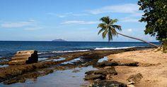 steps beach, tres palmas