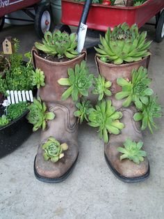 Cowboy boots planter.