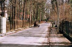 Slow life, Podkowa Lesna, Poland