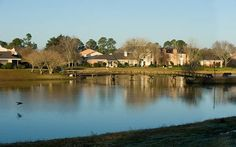 Gorgeous view of the lake at Shadowbrook Lakes in Baton Rouge, LA.