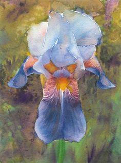 Iris Painting Fine Art Print Reproduction Watercolor