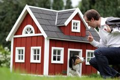 scandinavian falun red dog house