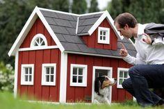 scandinavian falun red dog house