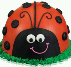 A Lady Bug for our Little Lady :)